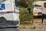 NC Mail carrier OK after tree falls on truck during Thursday deliveries